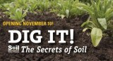 Dig It! The Secrets of Soil